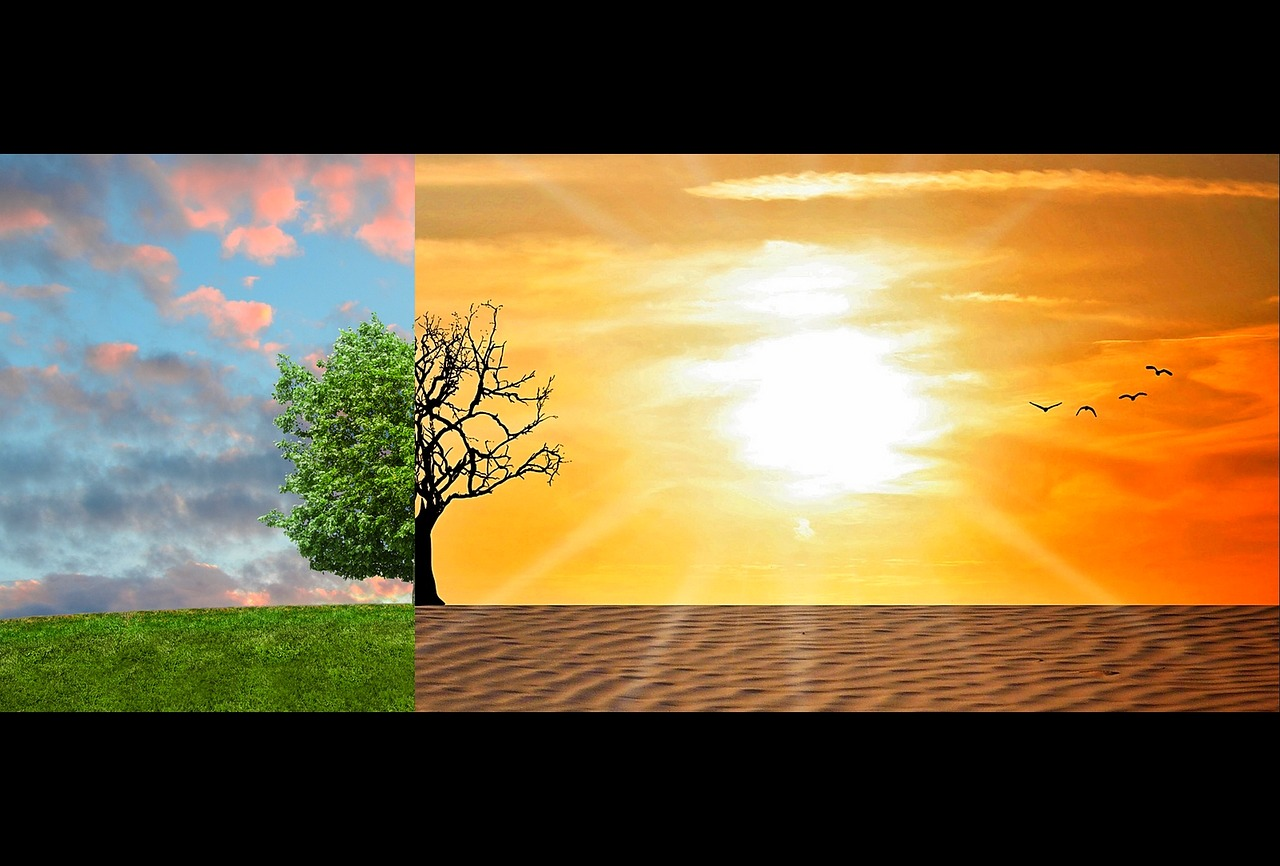 cambio climatico